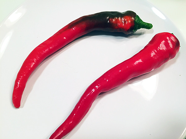 Portugal Hot pepper fruit