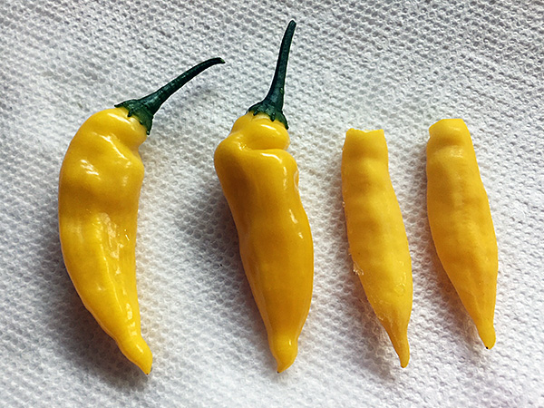 Aji Lemon pepper photo